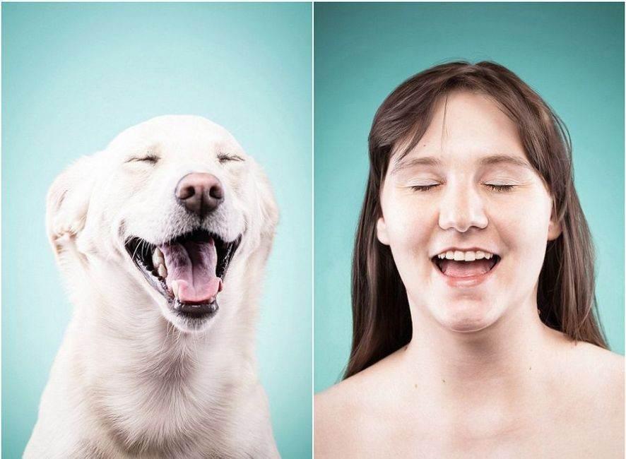 宠物主人模仿爱犬表情照萌翻众人